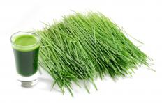 Wheatgrass may lower FSH.
