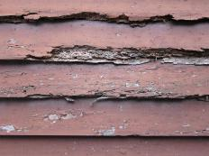 A property inspector looks for evidence of fire, water, or termite damage.
