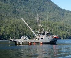 A commercial fishing boat using a depth finder.