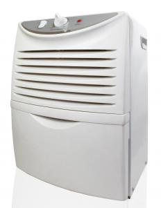 A dehumidifier may be used to take moisture out of the air.