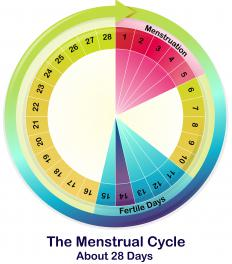 Ovulation spotting may occur two weeks before a woman's expected period.