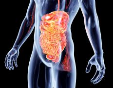 Chyme is what is left after the stomach breaks down food for use in the body.