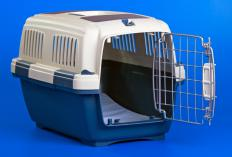 An airline approved pet carrier.