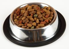 Dry dog food, also called kibble, has a long shelf life.
