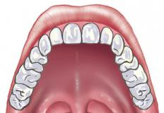 The hard palate is the front part of the roof of the mouth.