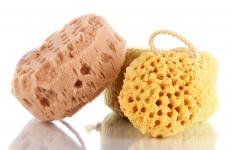 There are several types of facial sponges.