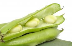 Legumes are a good source of micronutrients.