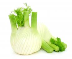 The bulb of fennel is used in fennel soup.