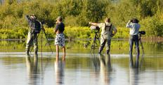 Tripods allow photographers to minimize movement when shooting pictures.