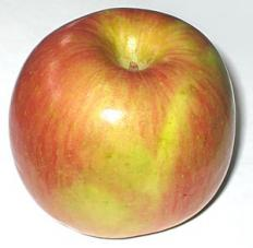 Fuji apples a great addition to salad.