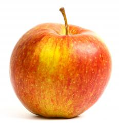 A healthy apple. Bitter pit causes apples to become deeply pitted.