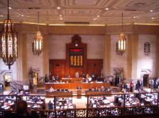 Elected officials in a representative democracy serve in some kind of chamber, like the House of Representatives.