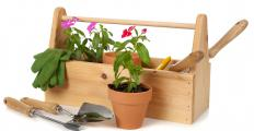 Gardening tools and potted ornamental plants.