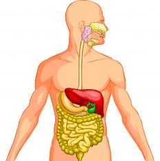 When the human digestive system is not working correctly, nutrients are not absorbed.