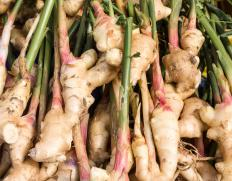 Ginger is technically a rhizome.