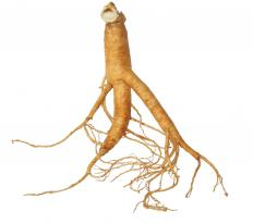 Ginseng root is a popular supplement found in many products that claim to boost energy levels.