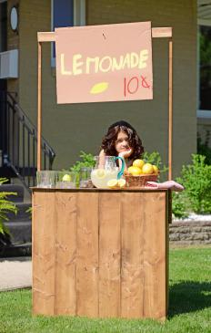 Young entrepreneurs often start with lemonade stands.