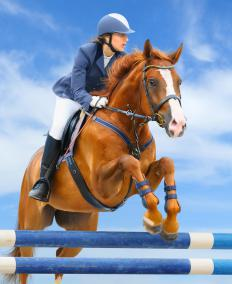 Jodhpurs are worn during horse jumping.