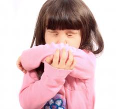 Nerves in the choanae can trigger a sneeze when irritated.