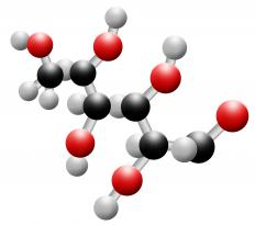 During respiration, glucose molecules react with oxygen molecules and are broken down.