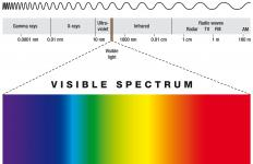 Someone positioned between a rainbow and the sun would see the colors of the visible spectrum from red to violet.