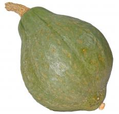 Hubbard squash is typically hard and firm on the outside, with shell colors that range from dark green or gray to blue.