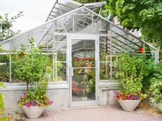 Greenhouse panels are usually made of glass or plastic to enable light to shine through.