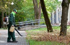A leaf blower helps clean leaves from a large outdoor area.
