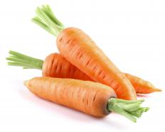 Carrots have tap roots.