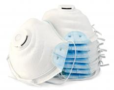 Workers dealing with mold should wear a respirator mask to prevent inhaling spores.