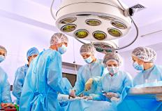 The first successful penile transplant surgery occurred in 2005.