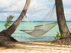 Recalling a paradise vacation is an example of declarative memory.