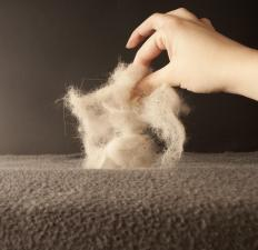 Lint brushes can be useful for removing pet hair from upholstery.