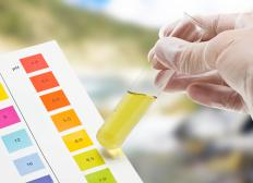 Without a pH meter, the acidity must be tested using a manual kit.