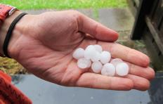 Handful of hailstones.