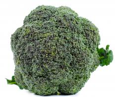 Choose broccoli that has dark green florets and is firm to the touch for best quality.
