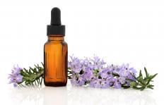 Beginners can learn how to make oils from natural herbs.