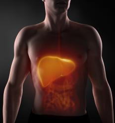 Exposure to dimethylamine may cause liver damage.