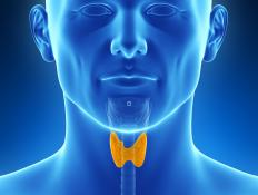 An overactive thyroid gland may cause lid lag.