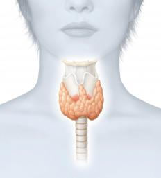 Thyroid disease may cause an irregular menstrual cycle.