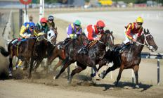 Horse racing odds are determined using a formula that takes into account the amount of money bet on a race, the amount bet on each horse, and the percentage of money kept by the track.