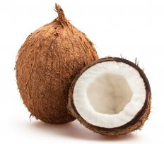 Coir is extracted from the hairy husk of coconuts.