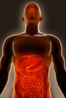 Bacteria coming from the small intestine could cause cholangitis.