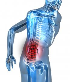 The human body, with the area primarily affected by lower back pain shown in red.