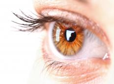 Pupils react to light, shrinking when a direct light is pointed at the eye.