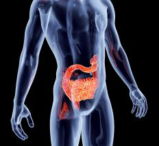 Enteric diseases are infections that can be caused by viruses or bacteria entering the body through the intestinal system.