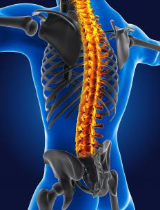 The spinal cord is a delicate area.