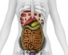 When contents of the intestines become partially obstructed, a partial bowel obstruction occurs.