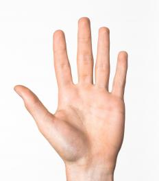 The opponens pollicis is the muscle that allows the thumb to reach across the hand or grasp an object.