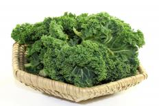 Kale contains plenty of calcium.